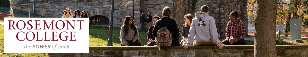 Rosemont Students gather on the bridge on campus in the fall